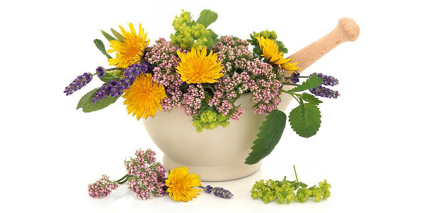 Herbal consultation for wellbeing